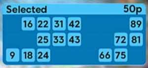 90-ball bingo ticket screenshot