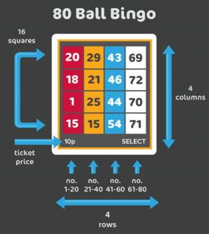 80ball bingo instructions screenshot