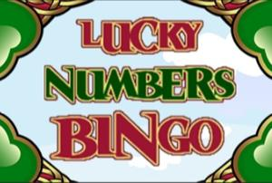 lucky numbers bingo screenshot
