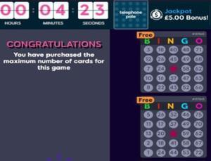 maximum bingo tickets screenshot