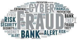 cyber fraud screenshot